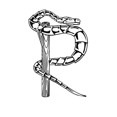 Letter snake R Vector