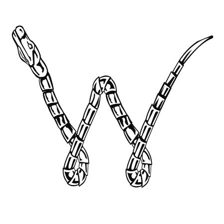Letter snake W Vector