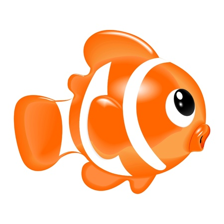 clown fish: fish