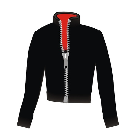 zipper hooded sweatshirt: jacket