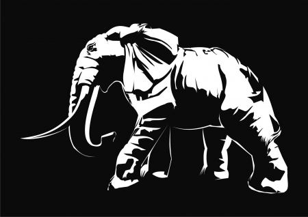 black and white: elephant