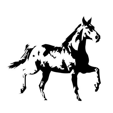 dessin noir et blanc: cheval