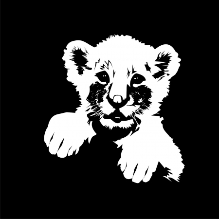 lion Stock Vector - 20098510