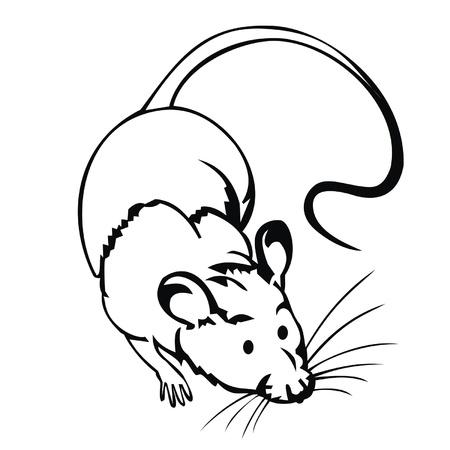 ratte cartoon: Ratte