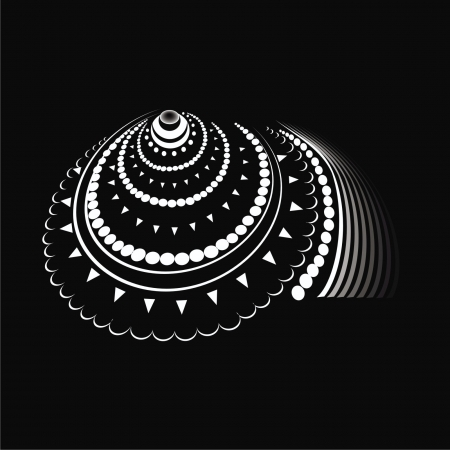 nautilus shell: shell