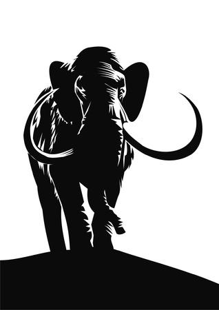 mammoth: mamont Illustration