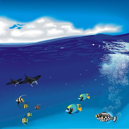 underwater with fishs and skats Illustration