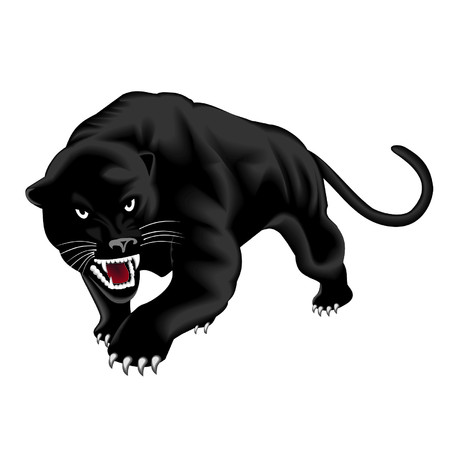 dangers: panther