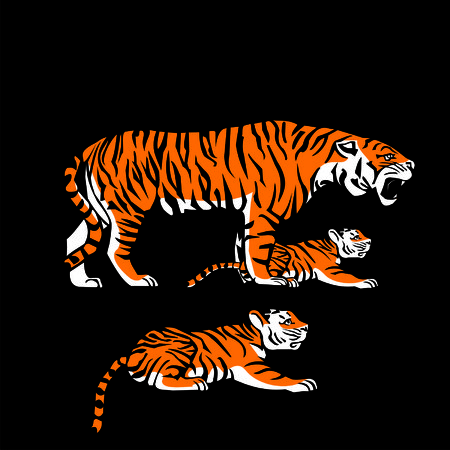 cubs: tiger and cubs Illustration