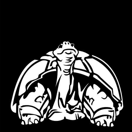 buckler: turtle