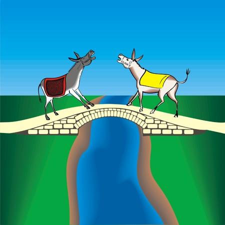 donkeys: two donkeys on the bridge