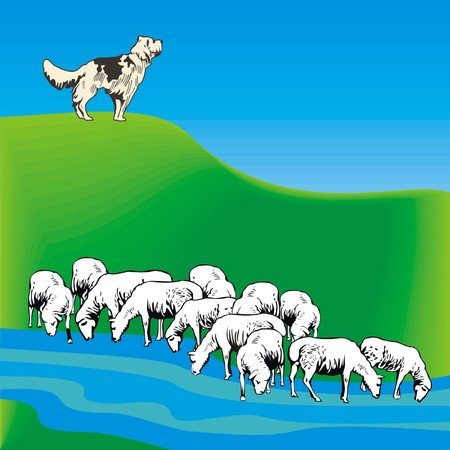 guarding: dog guarding a flock of sheep Illustration