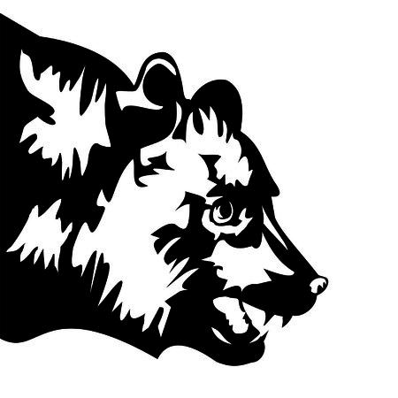 gripping: bear head Illustration