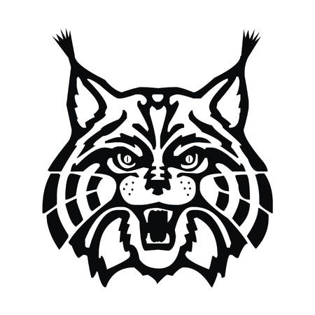 bobcat: lynx Illustration