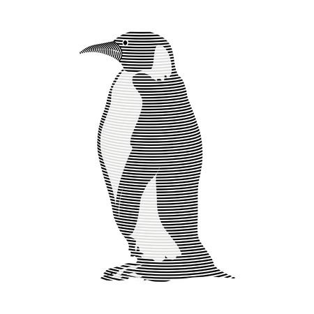 carcass: pinguïn karkas