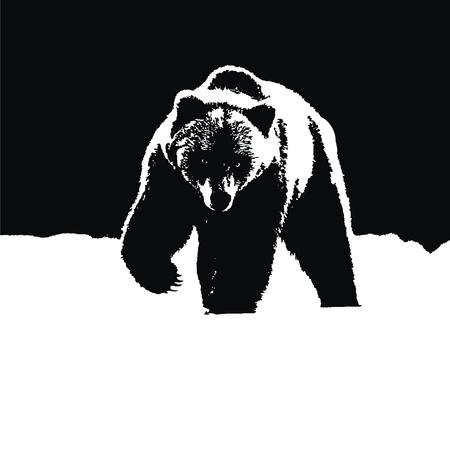 Bear icon illustration on white background.