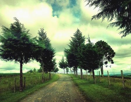 endless road: Endless road way