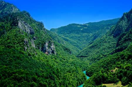 tara: View of Tara canyon, Montenegro