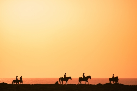 Silhouettes of the horse riders on the coast. Stock Photo - 9305838