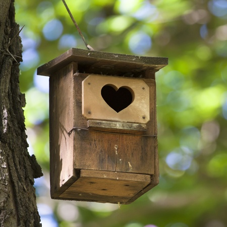 Bird house hanging from the tree with the entrance hole in the shape of a heart. Stock Photo