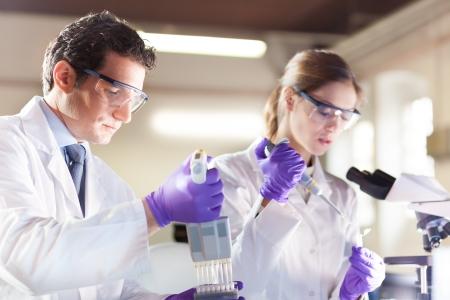 bata de laboratorio: Enfocado profesionales de ciencias biol�gicas de pipeteo soluci�n maestro de la mezcla en la PCR de 96 pocillos utilizando micro pipeta multicanal.