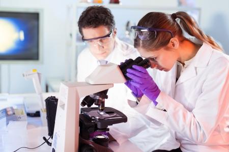 investigador cientifico: Cient�fico joven atractiva y su director de tesis posterior mirando el portaobjetos de un microscopio en el laboratorio forense. Foto de archivo