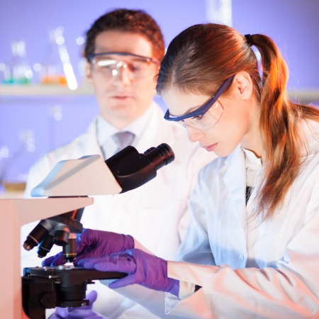Attractive young scientist and her post doctoral supervisor working on a project in the forensic laboratory. Stock Photo - 17099538