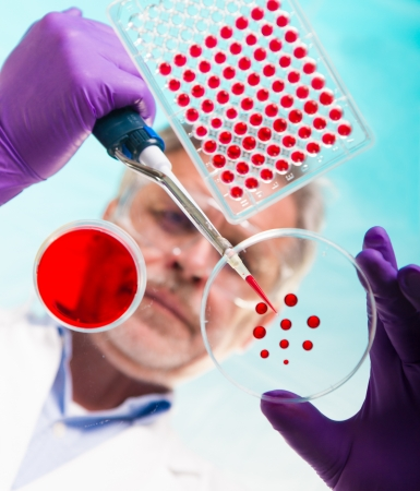 Focused senior life science professional pipetting solution into the pettri dish.  Lens focus on the researcher. photo