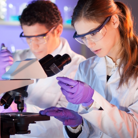 scientists: Attractive young scientist and her post doctoral supervisor working on a project in the life science laboratory