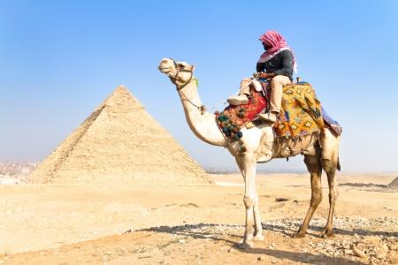 piramide humana: Un camello paciente con una silla de montar colorido espera a su dueño frente a las pirámides de Giza en El Cairo, Egipto Vertical Editorial