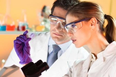 법의학 실험실에서 현미경 슬라이드를보고 매력적인 젊은 과학자와 그녀의 suprvisor.