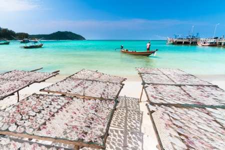 Traditional squids drying in the sun and thai fisherman long tail boat in a idyllic fishermen village; Thailand, Asia. photo
