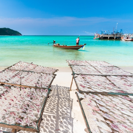 dried fish: Traditional squids drying in the sun and thai fisherman long tail boat in a idyllic fishermen village; Thailand, Asia. Stock Photo