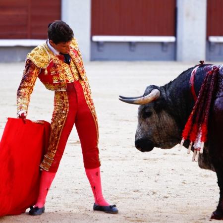 las ventas: MADRID - JUNE 25: Novilladas in Las Ventas. Novillero: Francisco Montiel. Bulfighting has been prohibited in Catalunia since 2011 for animal torturing. June 25, 2011 in Madrid (Spain) Editorial