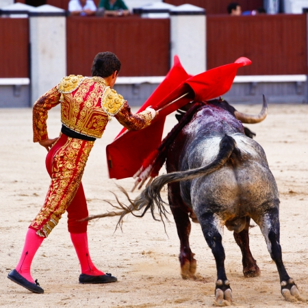 has been: Traditional corrida - bullfighting in spain. Bulfighting has been prohibited in Catalunia since 2011 for animal torturing.
