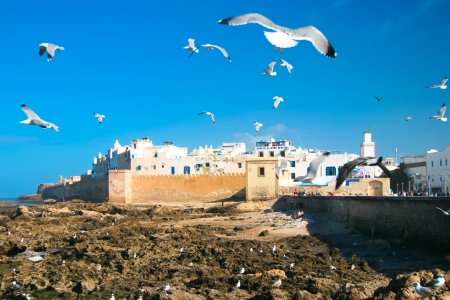 Essaouira is a city in the western Moroccan economic region of Marrakech-Tensift-Al Haouz, on the Atlantic coast. Since the 16th century, the city has also been known by its Portuguese name of Mogador or Mogadore. Morocco, north Africa. photo