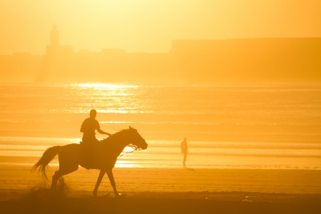 Man riding horse on the beach at sunset. photo