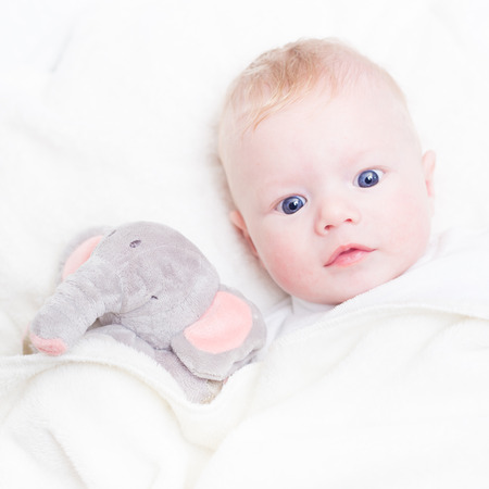 Cute blonde little baby boy with blue eyes with his favorite plush elephant toy. photo