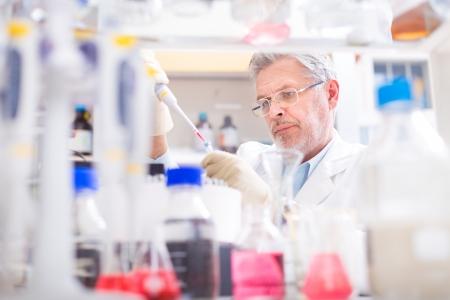 investigador cientifico: Cient�fico vida investigando en el laboratorio. Ciencias de la vida comprenden campos de la ciencia que implican el estudio cient�fico de los seres vivos: los microorganismos, plantas, animales y c�lulas humanas, los genes, el ADN