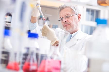 celulas humanas: Cient�fico vida investigando en el laboratorio. Ciencias de la vida comprenden campos de la ciencia que implican el estudio cient�fico de los seres vivos: los microorganismos, plantas, animales y c�lulas humanas, los genes, el ADN