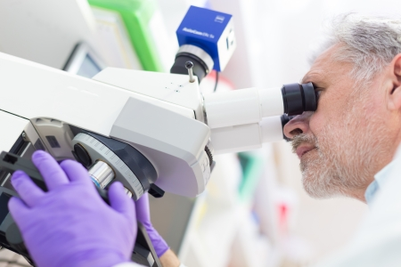 Senior head scientist  microscoping in the life science research laboratory ( diagnostics, biochemistry, pharmacy, genetics, forensics, microbiology, pharmacogenetics ...) Stock Photo - 25203987