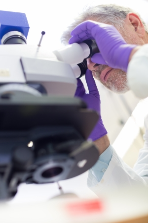 Senior head scientist  microscoping in the life science research laboratory ( diagnostics, biochemistry, pharmacy, genetics, forensics, microbiology, pharmacogenetics ...) photo