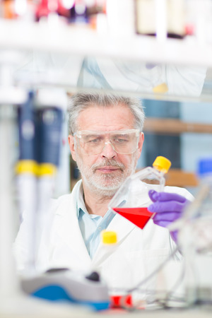 laboratory animal: Life scientist researching in laboratory. Life sciences comprise fields of science that involve the scientific study of living organisms: microorganism, plant, animal and human cells, genes, DNA... Stock Photo