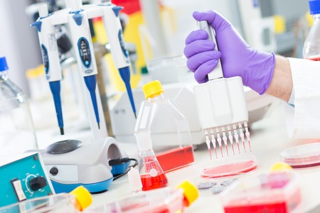 assay: Scientist uses multipipette during DNA research in scientific laboratory. Stock Photo