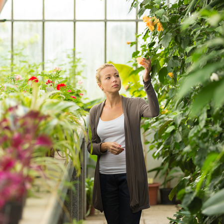Florists woman working with flowers in a greenhouse.  photo