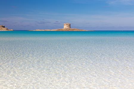 Beautiful turquoise blue mediterranean Pelosa beach near Stintino,Sardinia, Italy. Фото со стока