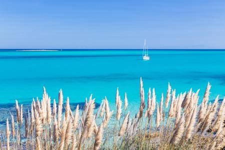 White sail boat at the beautiful turquoise blue mediterranean Pelosa beach near Stintino,Sardinia, Italy.