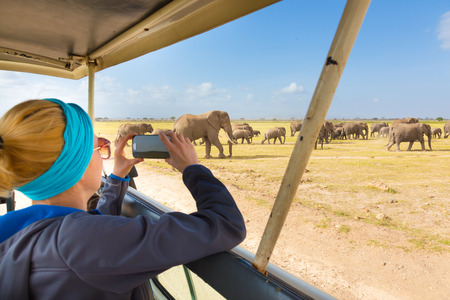 アフリカの野生動物サファリの女性。女性が彼女のスマート フォンで野生アフリカ象の群れの写真を撮るします。オープン屋根サファリのジープ。 写真素材