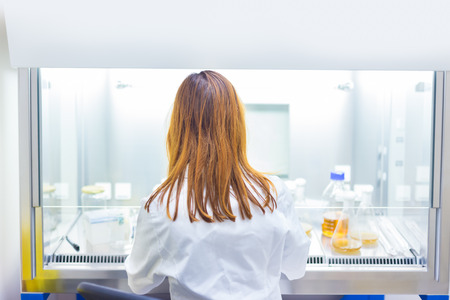 laboratory animal: Life scientist researching in laboratory. Life sciences study living organisms on the level of microorganisms, viruses, human, animal and plant cells, genes, DNA...