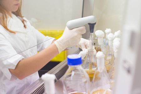 living organisms: Life scientist researching in laboratory. Life sciences study living organisms on the level of microorganisms, viruses, human, animal and plant cells, genes, DNA...